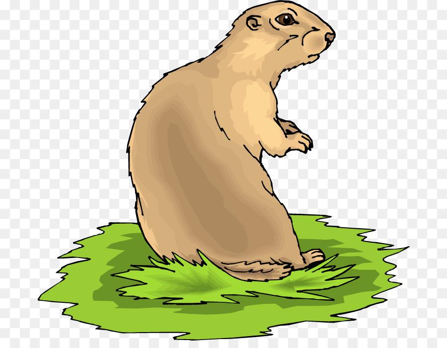 Beaver cartoon wildlife graphics. Groundhog clipart prairie animal
