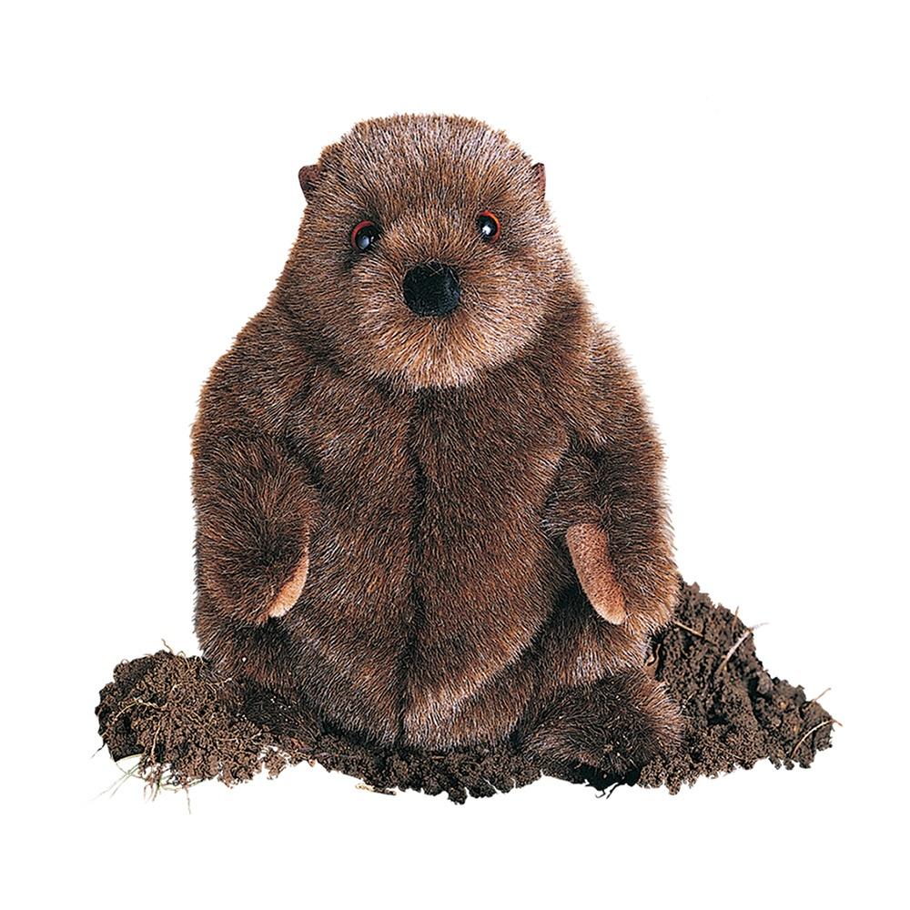 Groundhog clipart realistic. Chuckwood