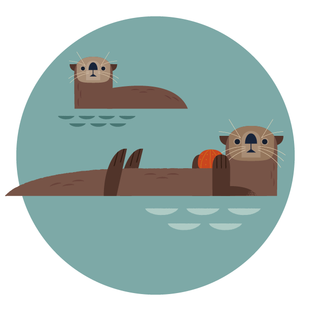 Groundhog clipart sea otter. Support the animal care