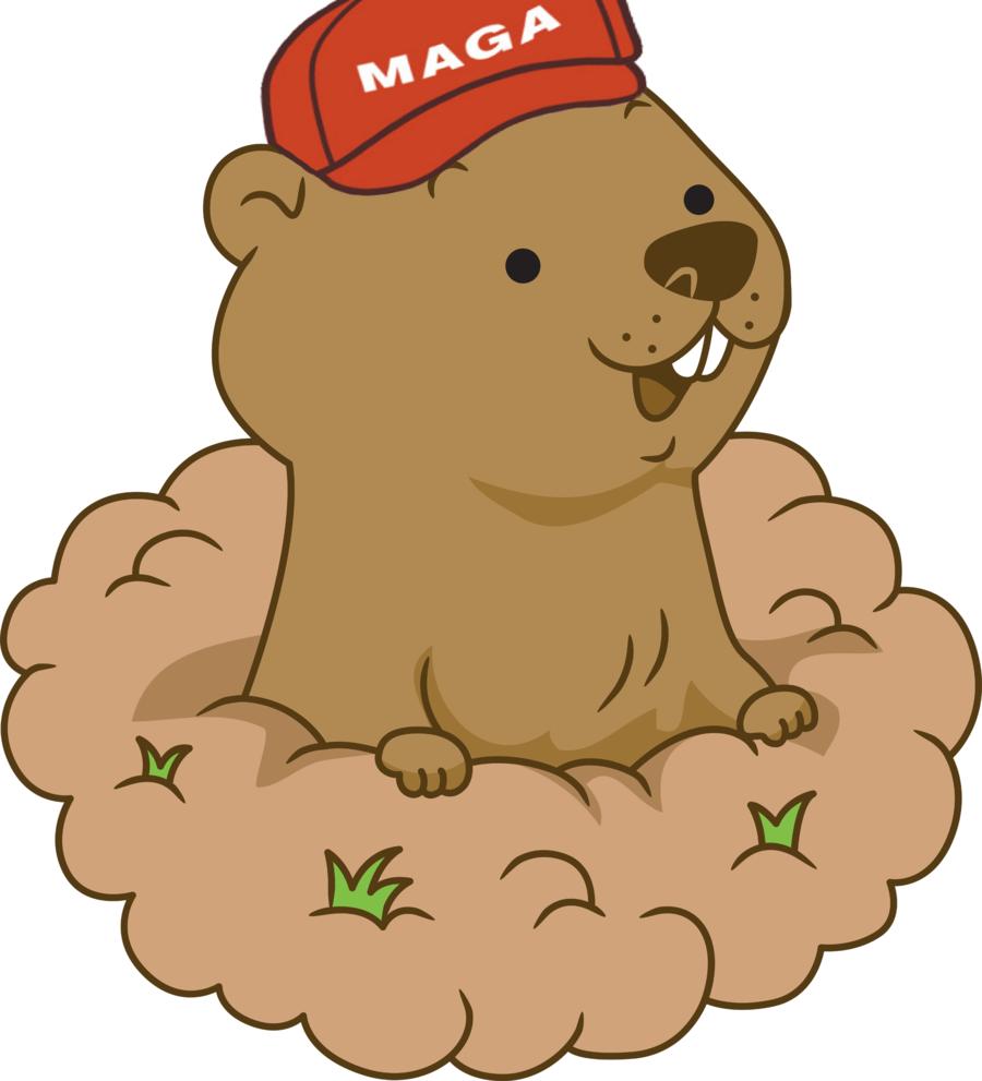 Groundhog clipart transparent. Day drawing cartoon illustration
