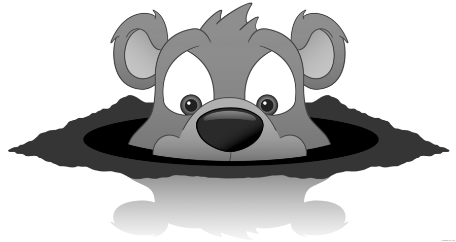 Day nose head cartoon. Groundhog clipart transparent