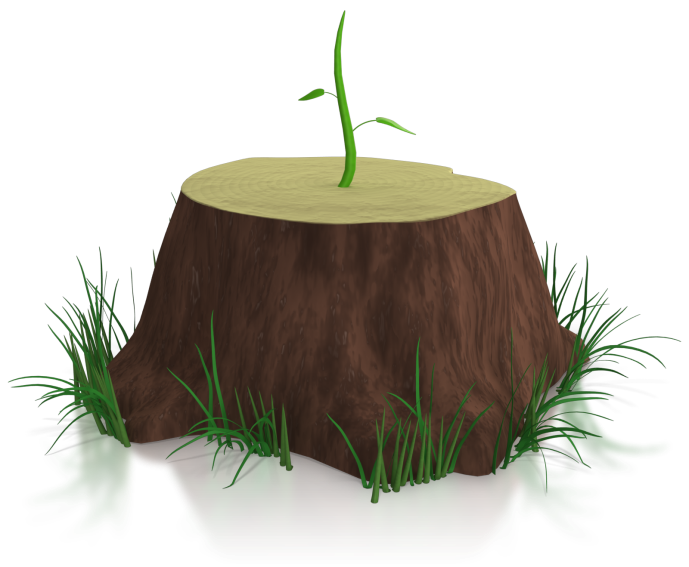 From where i m. Growth clipart internal