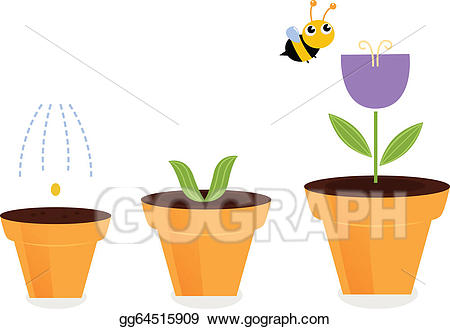 growth clipart potted plant