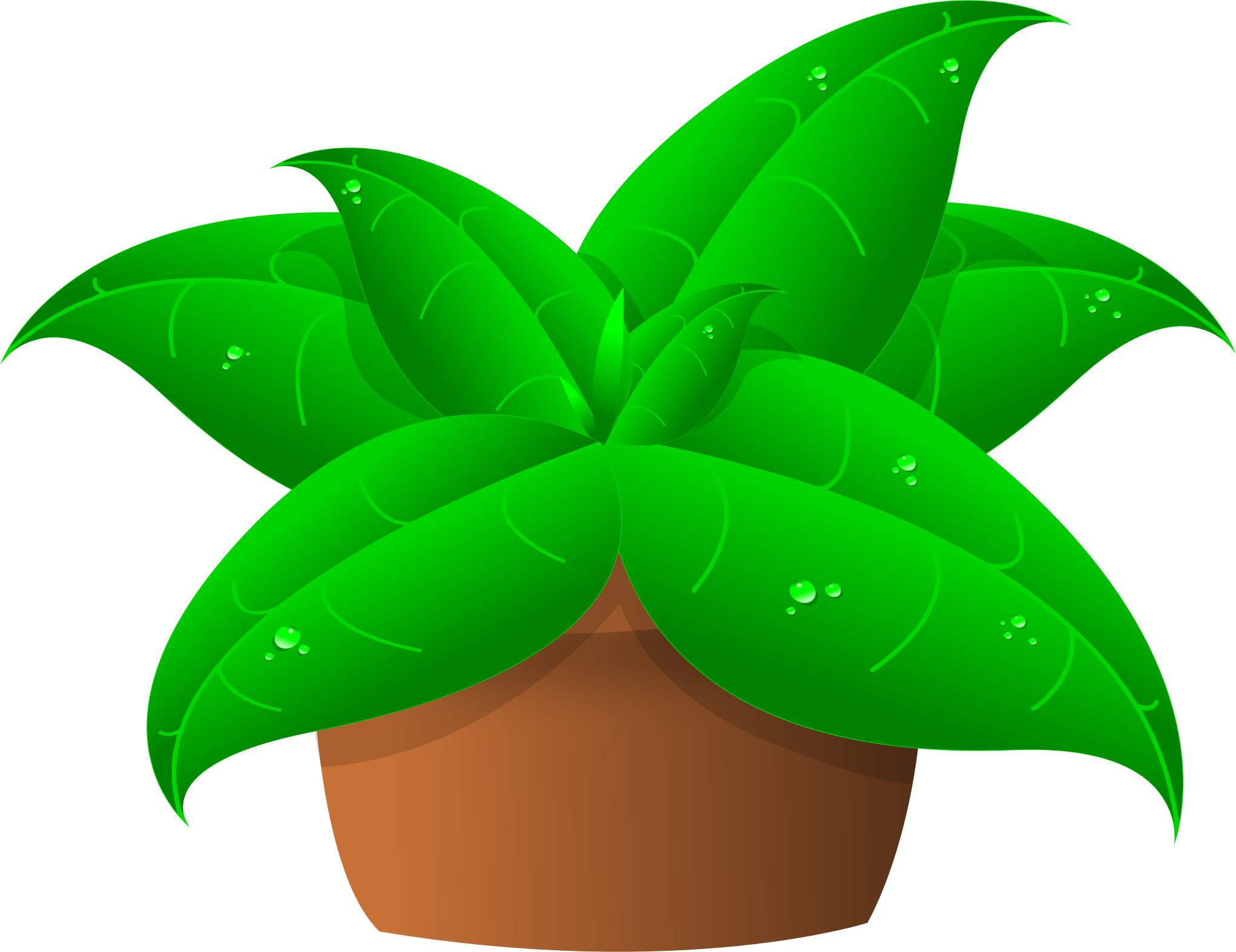 Crazywidow info. Growth clipart potted plant