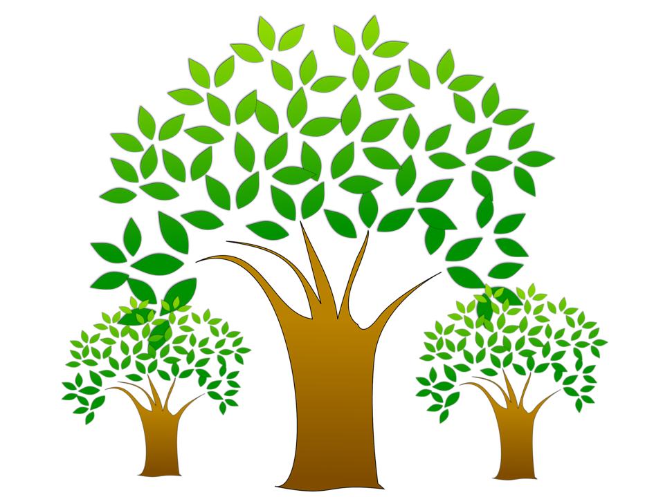 Tamarind food forest permaculture. Growth clipart tree plantation