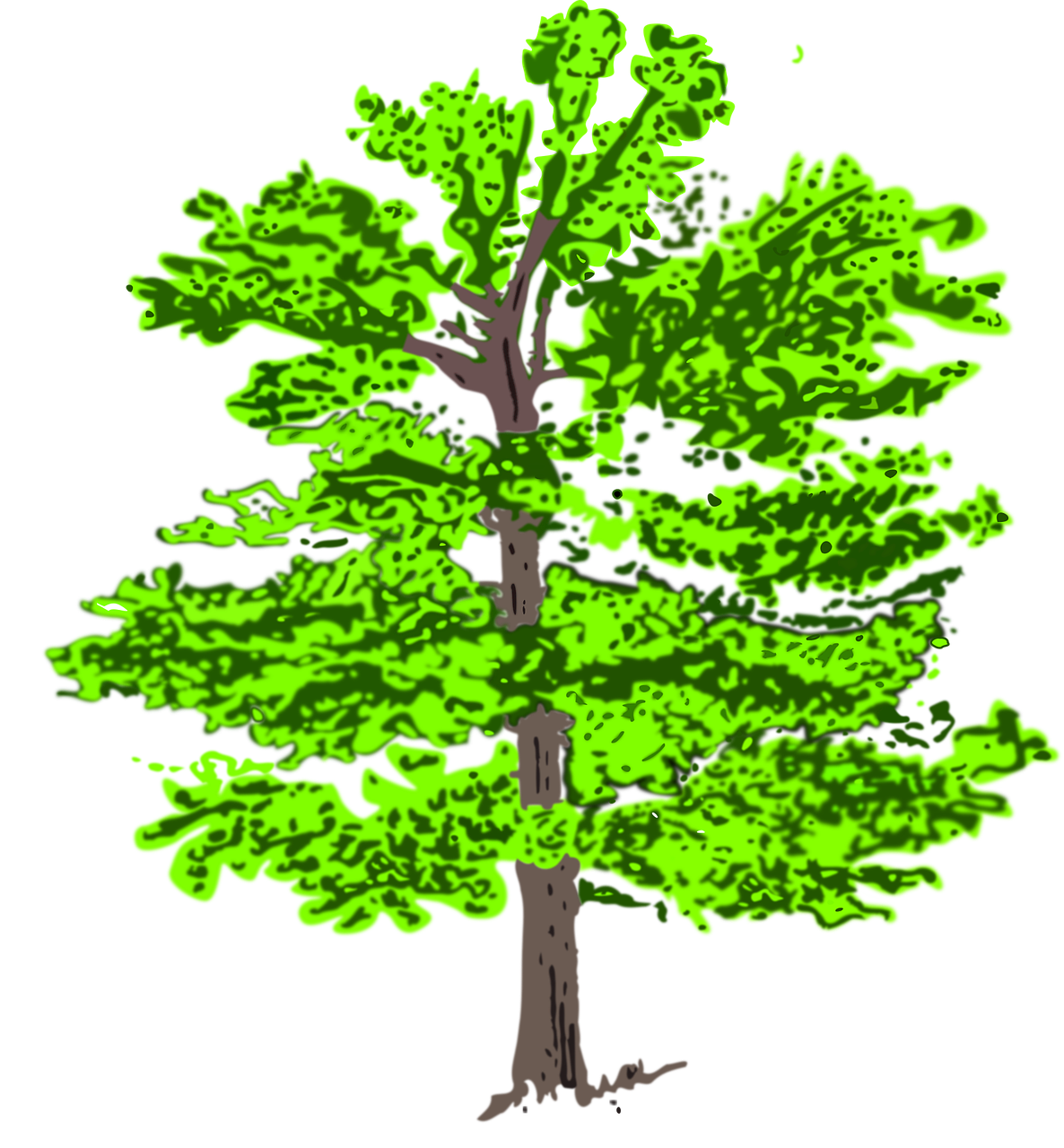 Growth clipart tree plantation. Green plant nature leaf