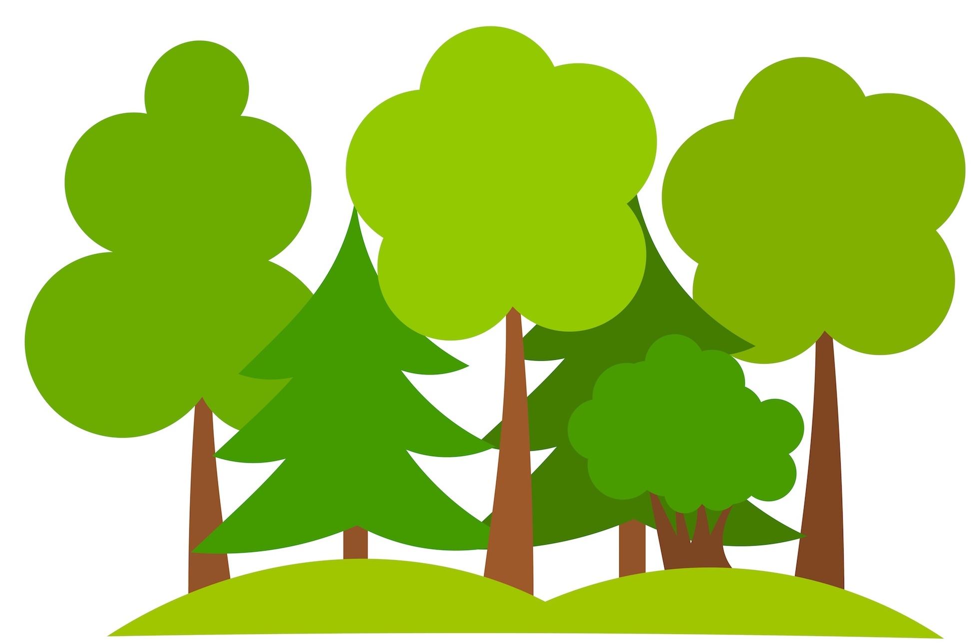 Gsn planting initiative green. Growth clipart tree plantation