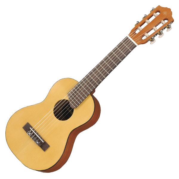 Silverwood school guitar lessons. Musician clipart music lesson