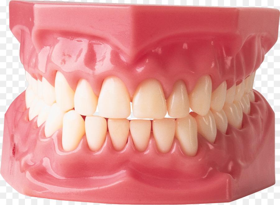 Gum clipart human tooth. Mouth cartoon transparent