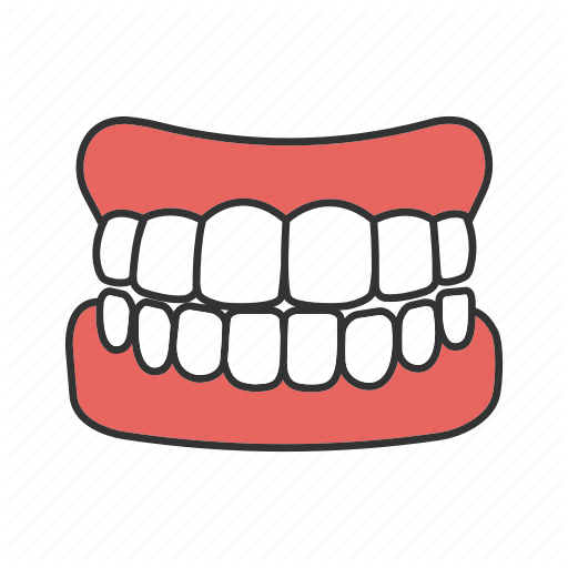 Gum clipart human tooth.  stomatology filled color