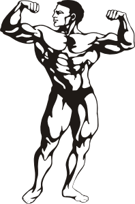 Gym clipart builder. Body clip art at