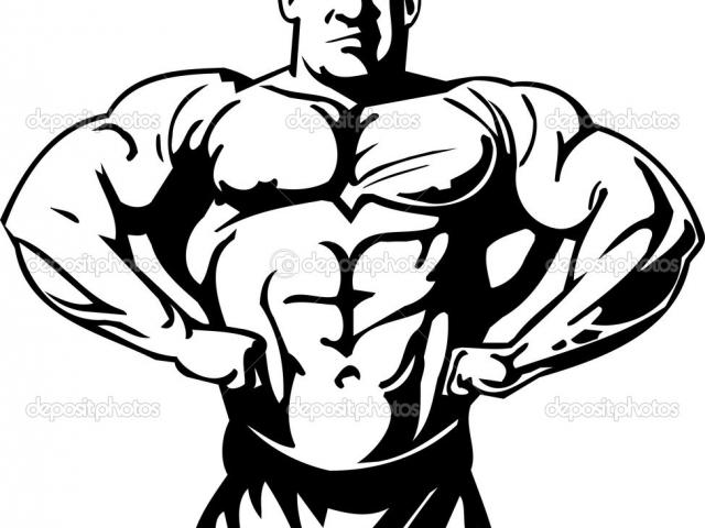Gym Clipart Gym Body Picture 2786262 Gym Clipart Gym Body
