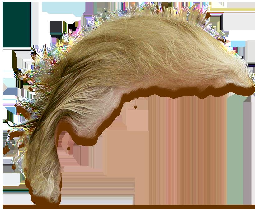 Hair clipart realistic. Trump s