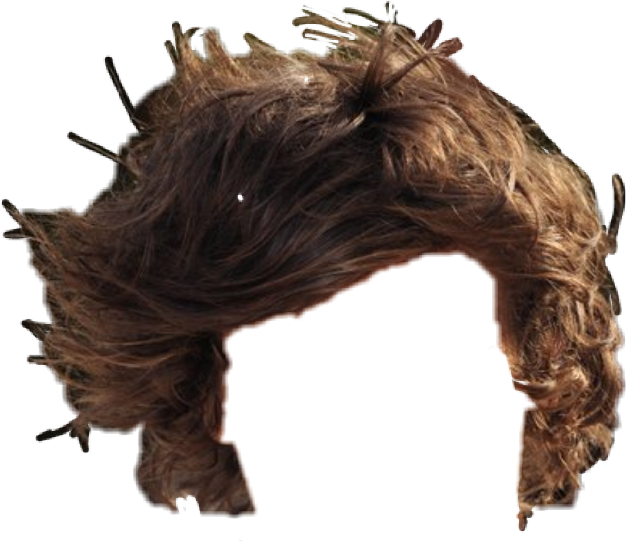 Hair hairstyle shorthair. Haircut clipart accessory