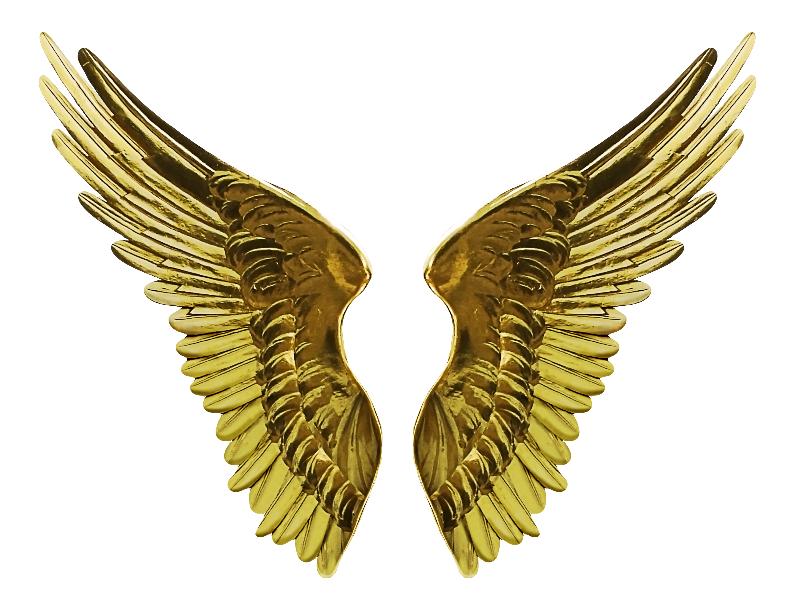 Angel gold wings png. Wing clipart metal