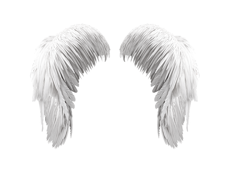 Wing clipart grunge. White angel wings png