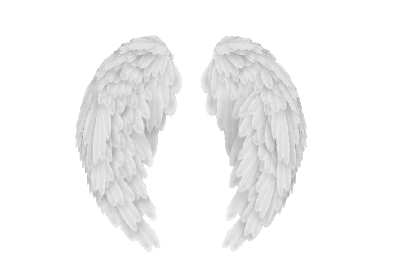 Wing clipart fallen angel. Wings png photo editing
