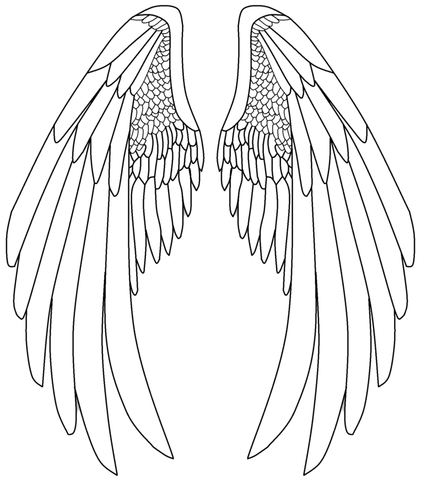 Easy angel wings drawing. Wing clipart template