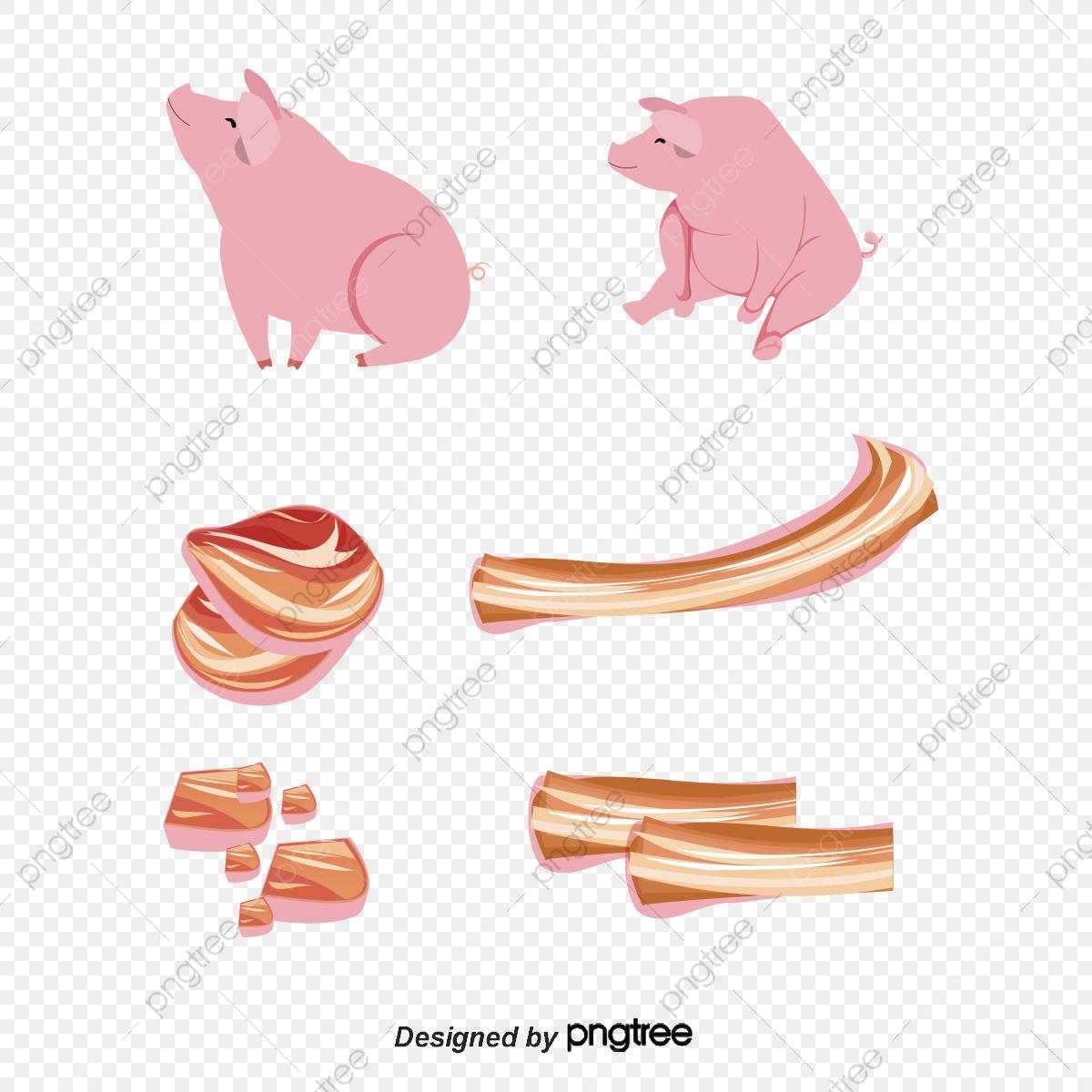 Cartoon and pork vector. Ham clipart pig