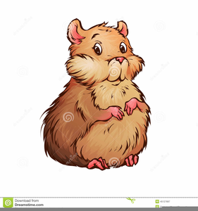 Hamster clipart. Free images at clker