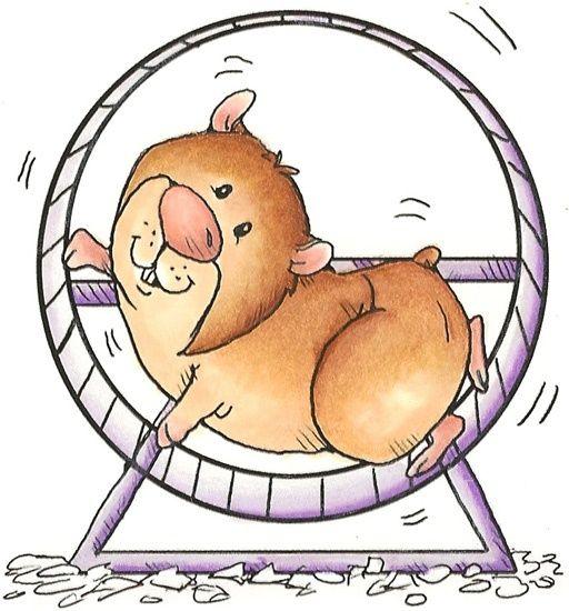 Hamster clipart. R sultats de recherche