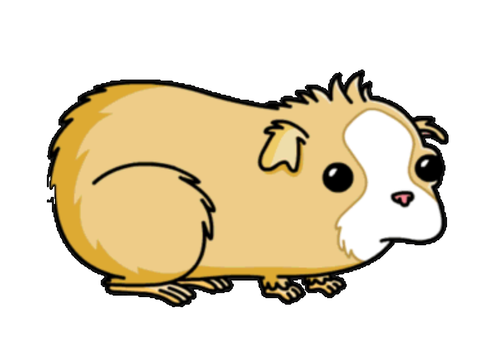 Hamster clipart animated. Cartoon guinea pig pictures