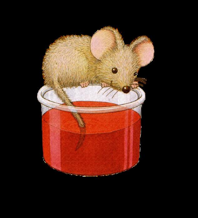 Hamster clipart baby hamster. Sgblogosfera mar a jos