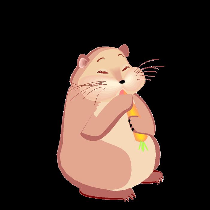 Hamster clipart bottle. Custom water by funcustomanimals