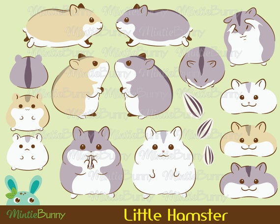 Animal hamtaro kawaii hand. Hamster clipart cute hamster