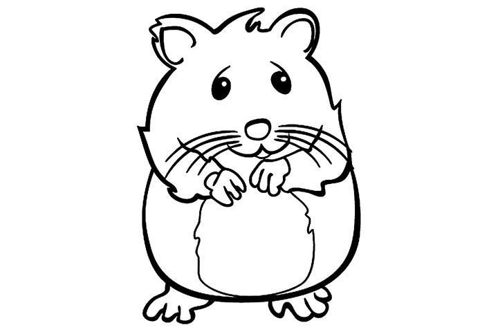 Hamster clipart drawn. Free download best on