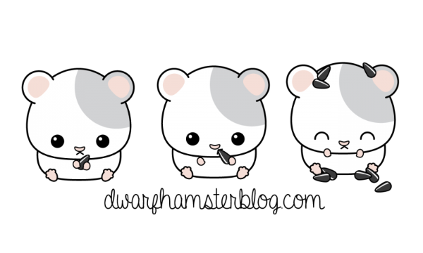 Blog this page has. Hamster clipart dwarf hamster