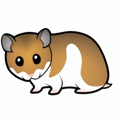 Hamster clipart easy. Drawing free download best