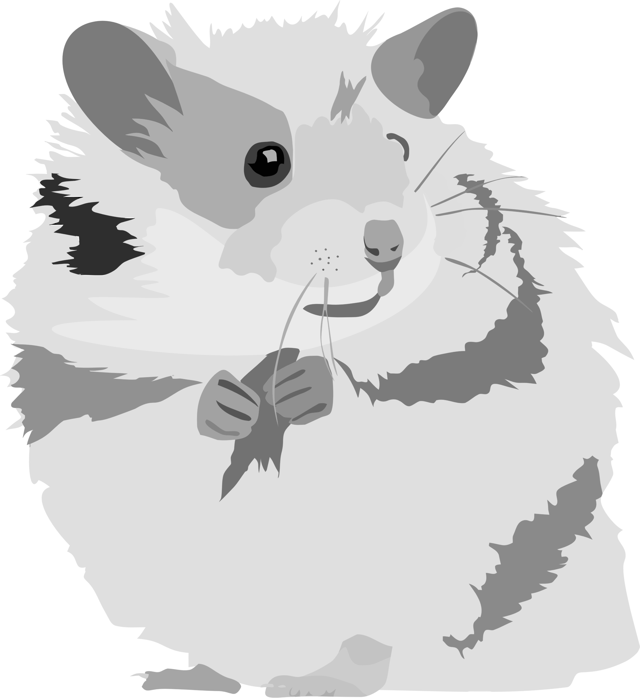 Clipartblack com hamsterbclipart animals. Hamster clipart face