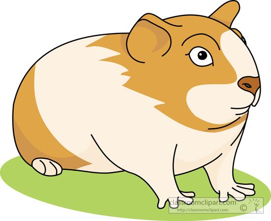 Best clipartion com . Hamster clipart gerbil