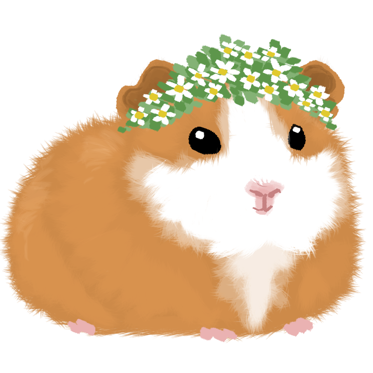 Hamster clipart guinea pig. I ll keep drawing