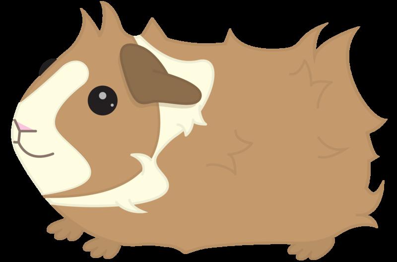 Contact me piggies designs. Hamster clipart guinea pig