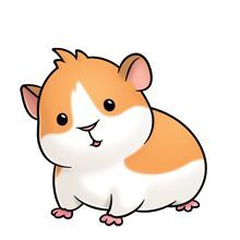 Pin on cute animals. Hamster clipart guinea pig