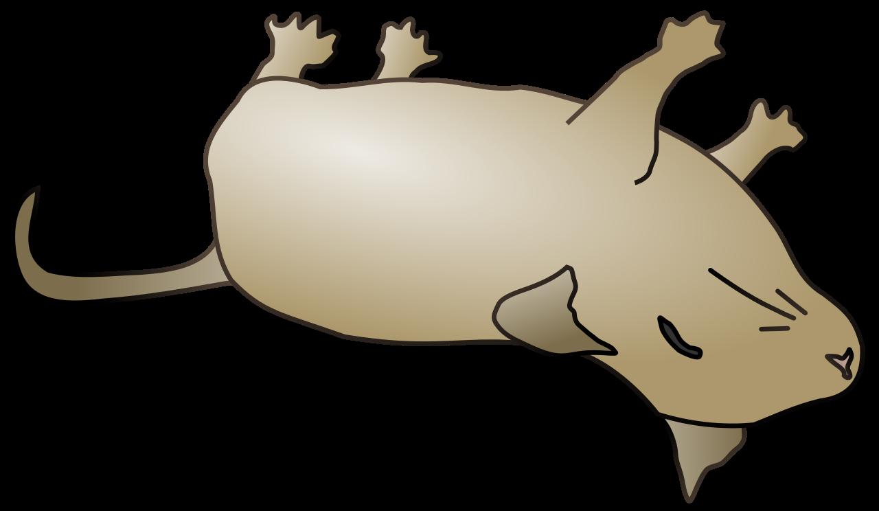 File dead mouse svg. Hamster clipart hamster ball