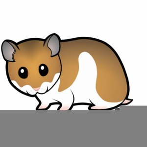 Free images at clker. Hamster clipart hamster cartoon