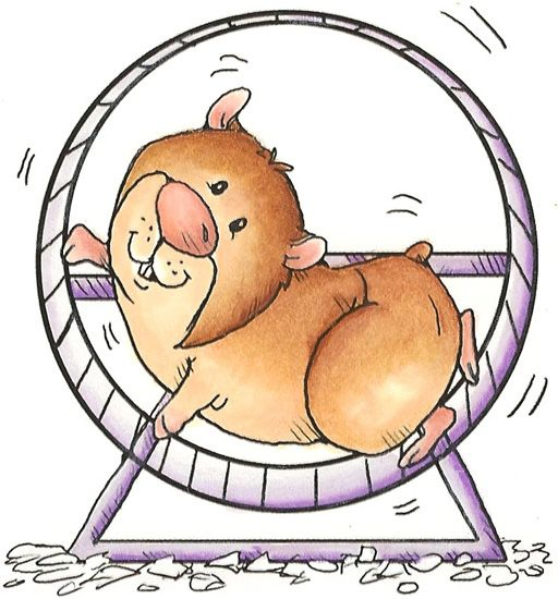 Am i there yet. Hamster clipart kid