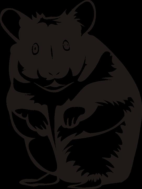 Hamster clipart outline. Rodent frames illustrations hd