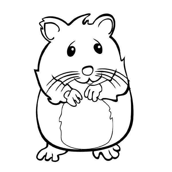 Hamster clipart outline. Free cute hamsters cliparts