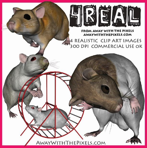 Hamster clipart realistic. Animal for teachers