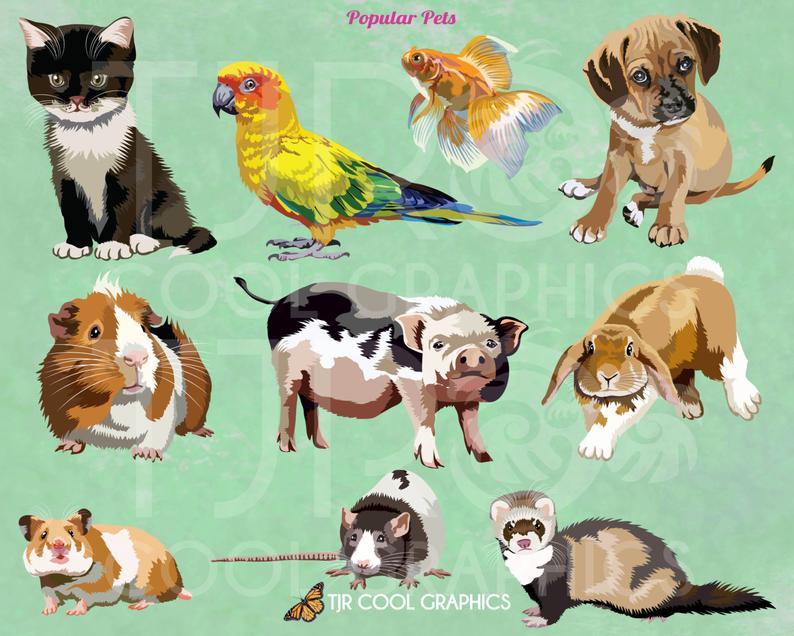 Hamster clipart realistic. Popular pets digital clip