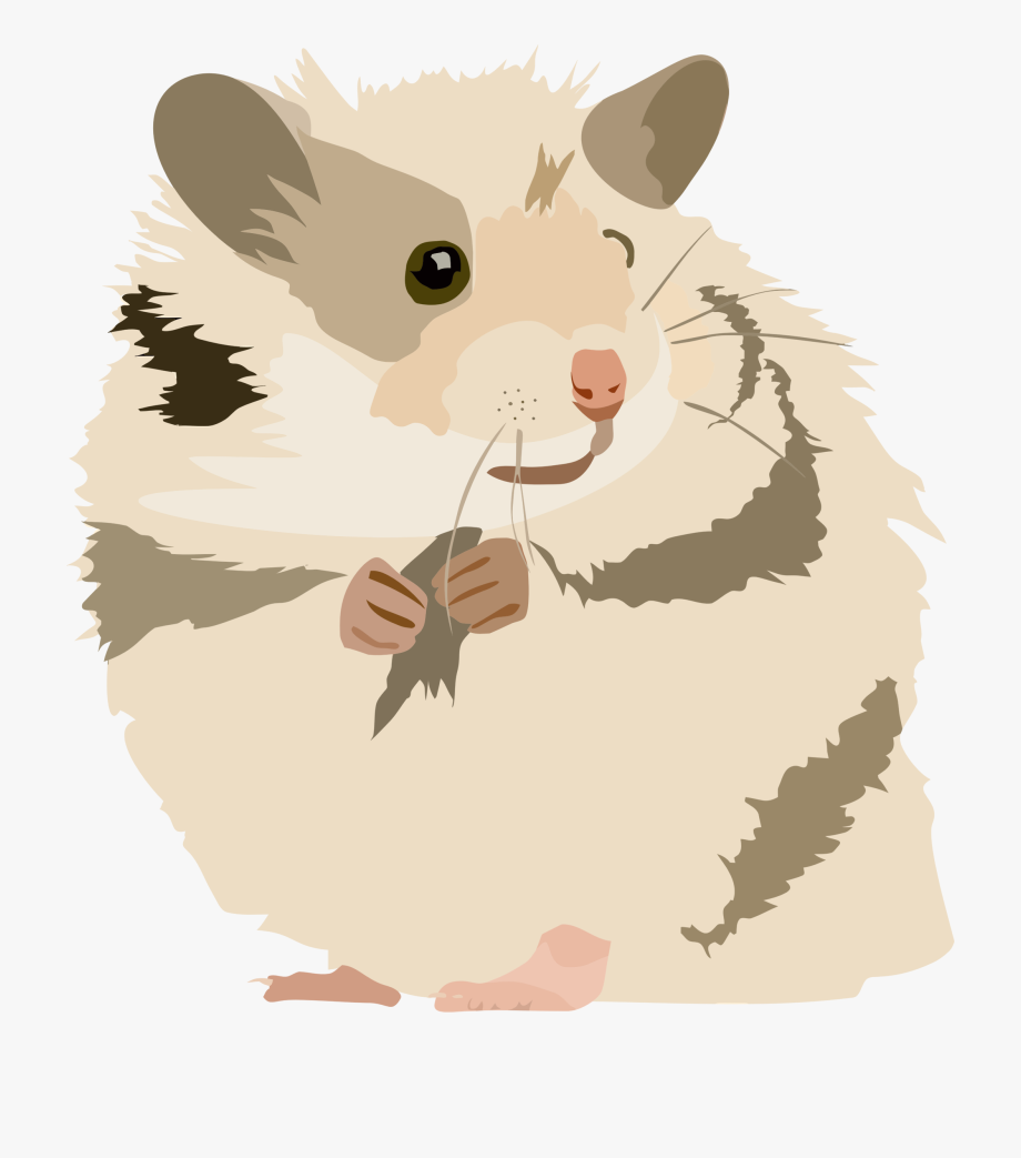 Hamster clipart rodent. Png free cliparts on