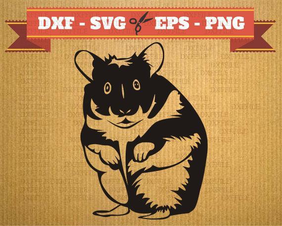 Hamster clipart svg. Files rodent png dfx