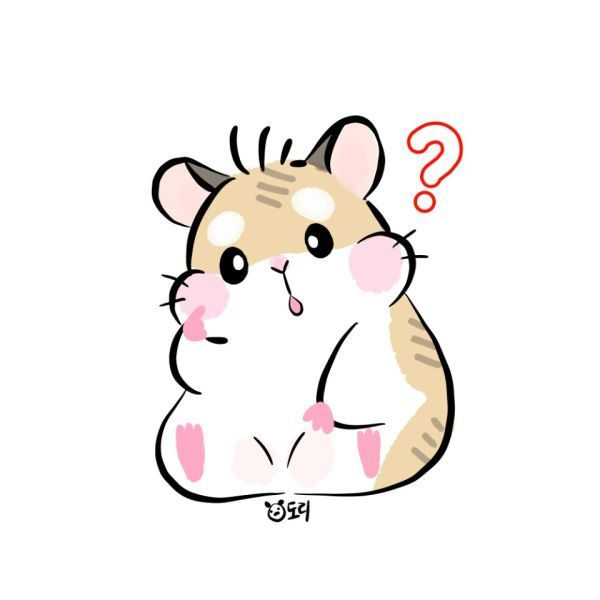 Hamster clipart syrian hamster. Drawing in cartoon cute