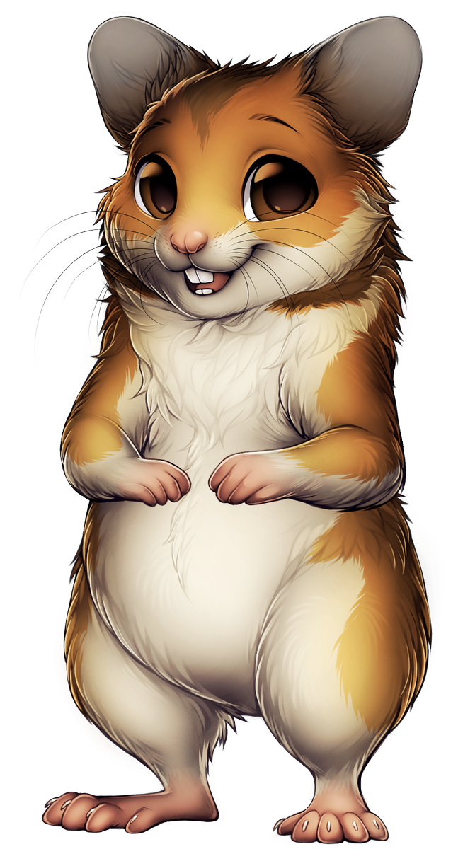 Furvilla on twitter from. Hamster clipart syrian hamster