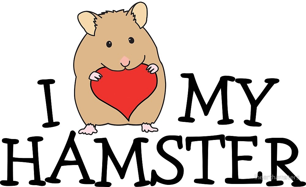 Art by ihearthamsters redbubble. Hamster clipart syrian hamster