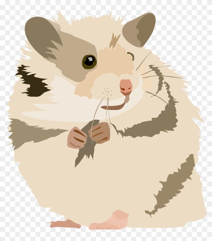 Hamster clipart transparent background. Png